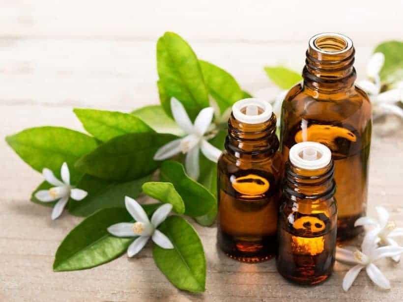 Ten Most Expensive Essential Oils, EcoLuxLuv, FolioYVR, Vancouver, BC, 604, Vancity, Luxury Lifestyle, Helen Siwak