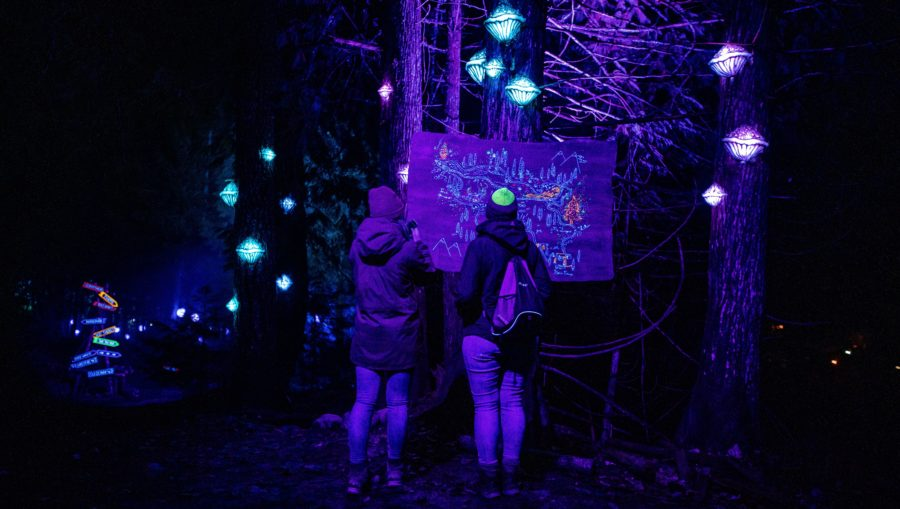 A couple looks at the forest map